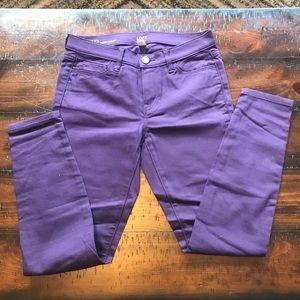 Purple Loft Jeans
